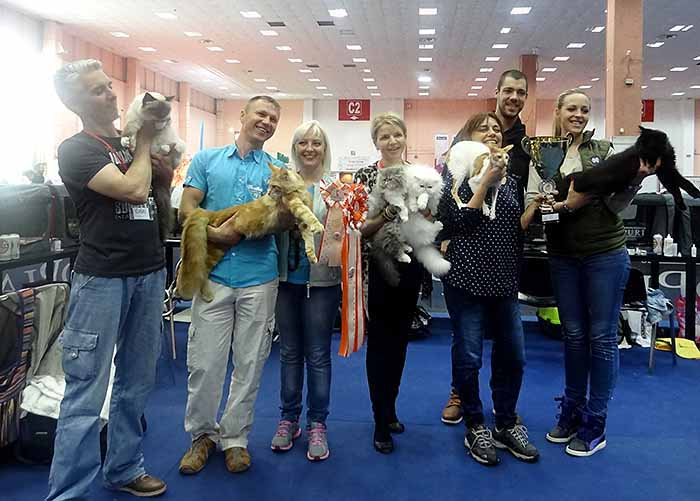 WCF's Cat Olimpia 2016