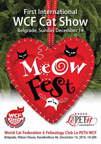Meow Fest poster